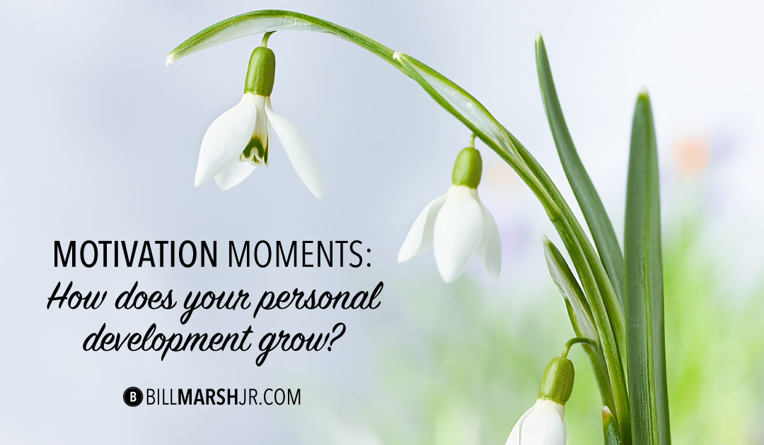 Motivation Moments: How Does Your Personal Development Grow?