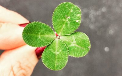 4 Simple Tips to Create Luck, Multiply Success, and Live a Positively Productive Life